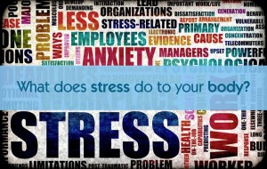 What does stress do